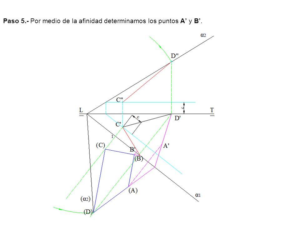Paso 5.- Por medio de la afinidad determinamos los puntos A' y B'.