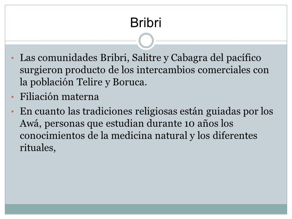 Bribri Las comunidades Bribri, Salitre y Cabagra del pacífico surgieron producto de los intercambios comerciales con la población Telire y Boruca.