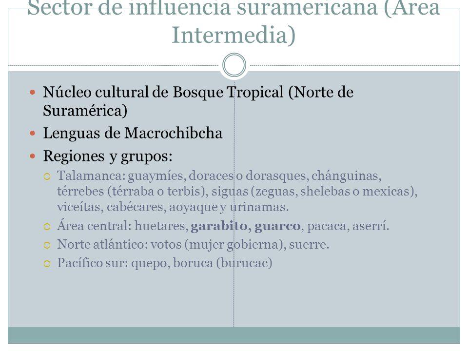 Sector de influencia suramericana (Área Intermedia)