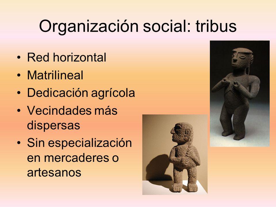 Organización social: tribus