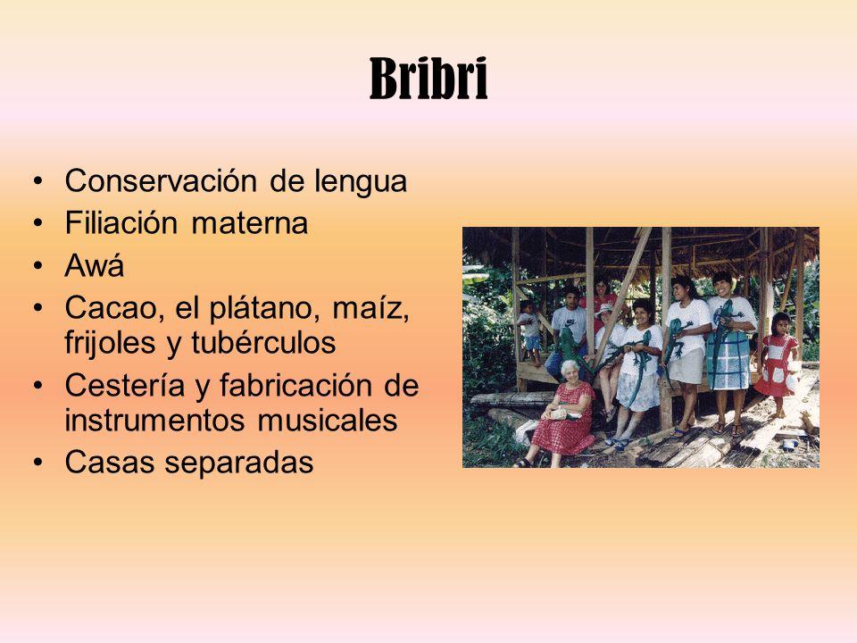 Bribri Conservación de lengua Filiación materna Awá