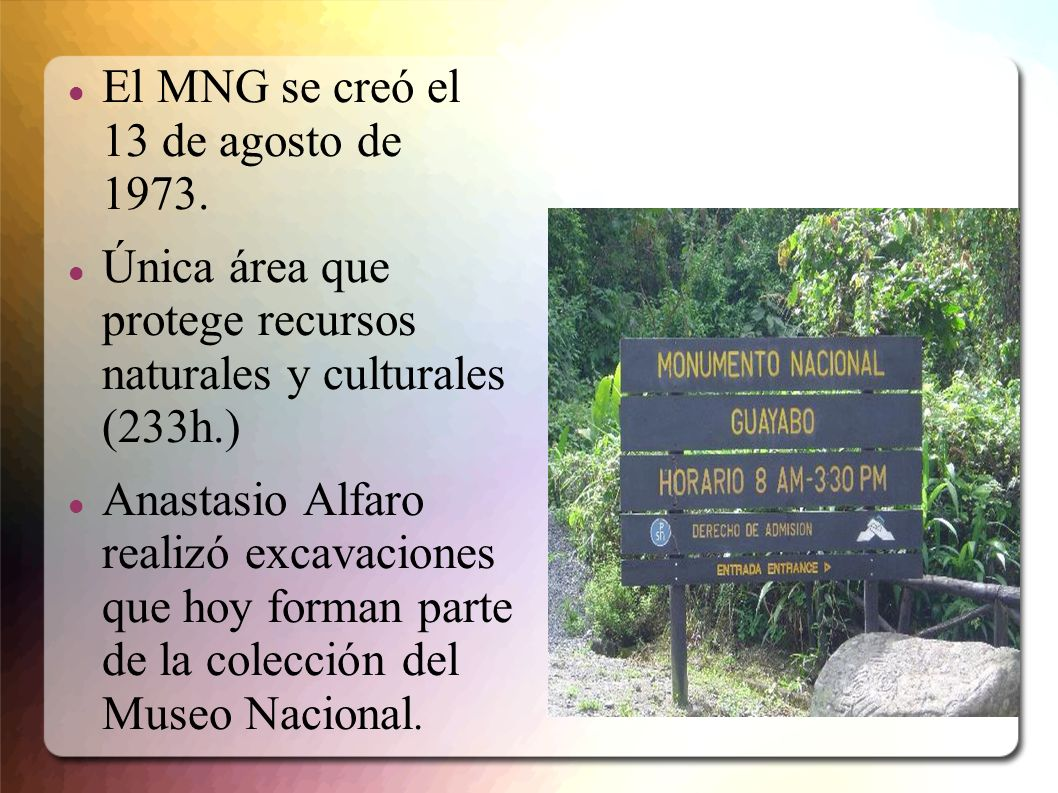 El MNG se creó el 13 de agosto de 1973.