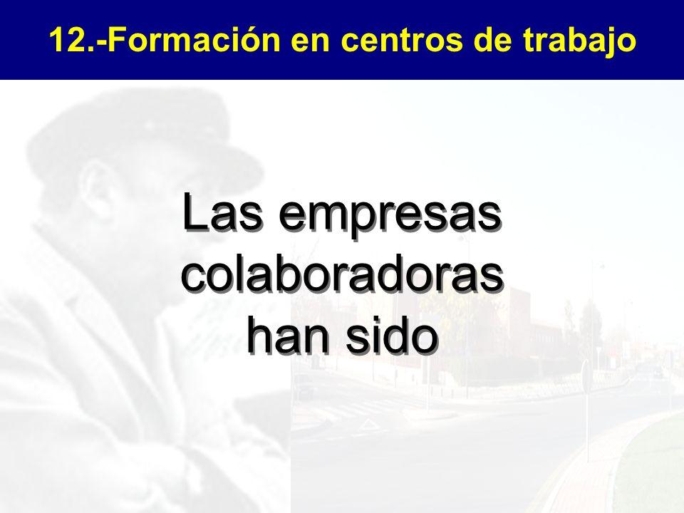 12.-Formación en centros de trabajo