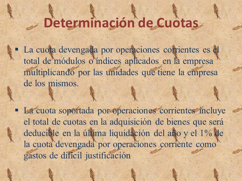 Determinación de Cuotas