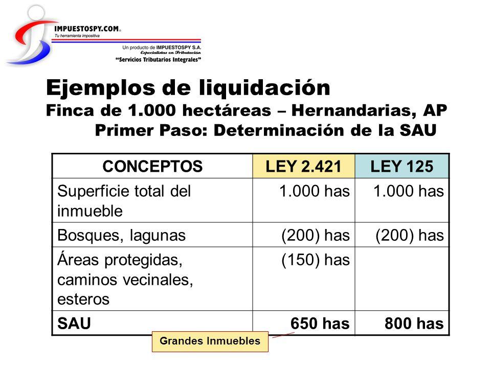 Ejemplos de liquidación