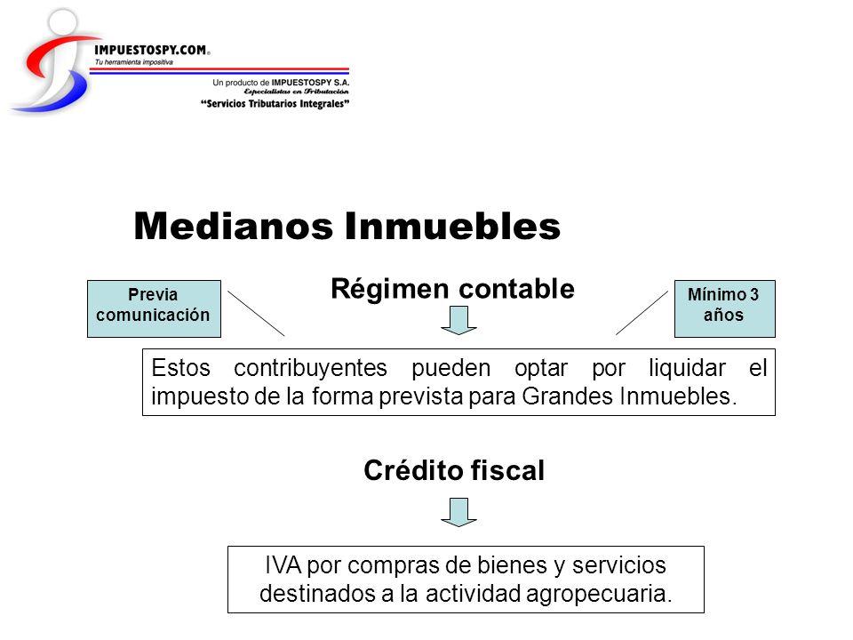 Medianos Inmuebles Régimen contable Crédito fiscal