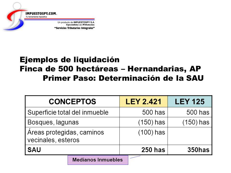 Ejemplos de liquidación Finca de 500 hectáreas – Hernandarias, AP