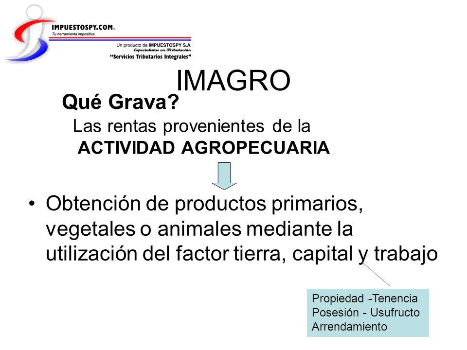 IMAGRO Qué Grava Las rentas provenientes de la. ACTIVIDAD AGROPECUARIA.