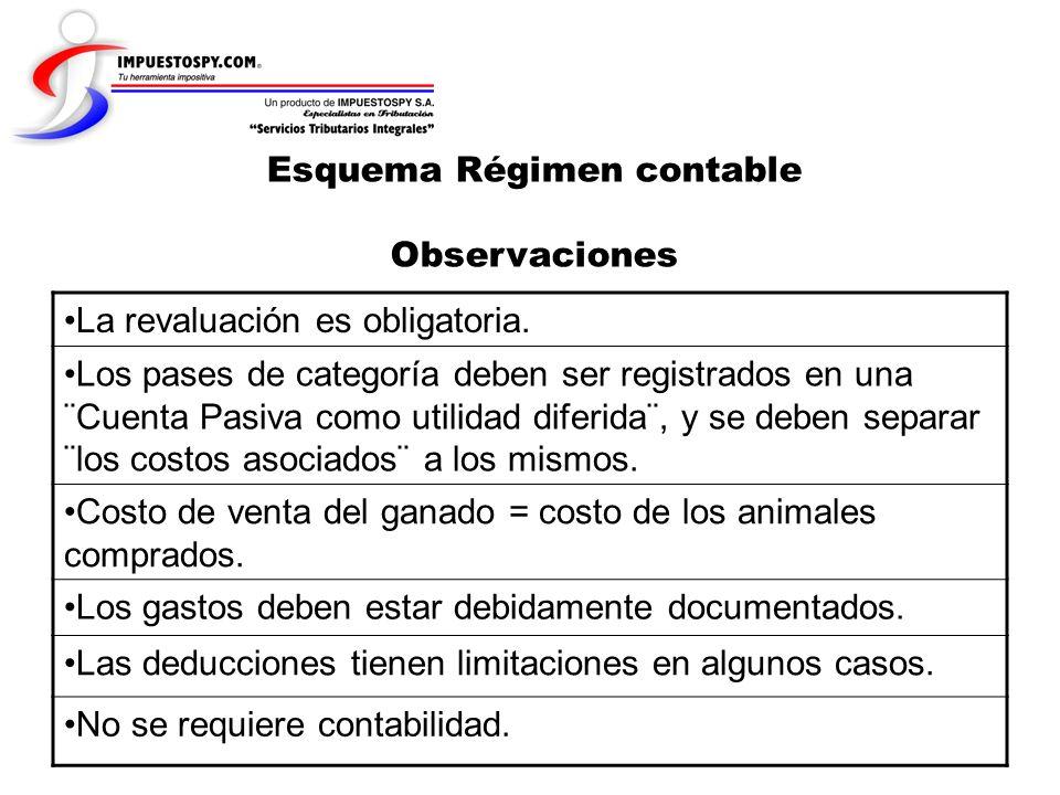 Esquema Régimen contable Observaciones
