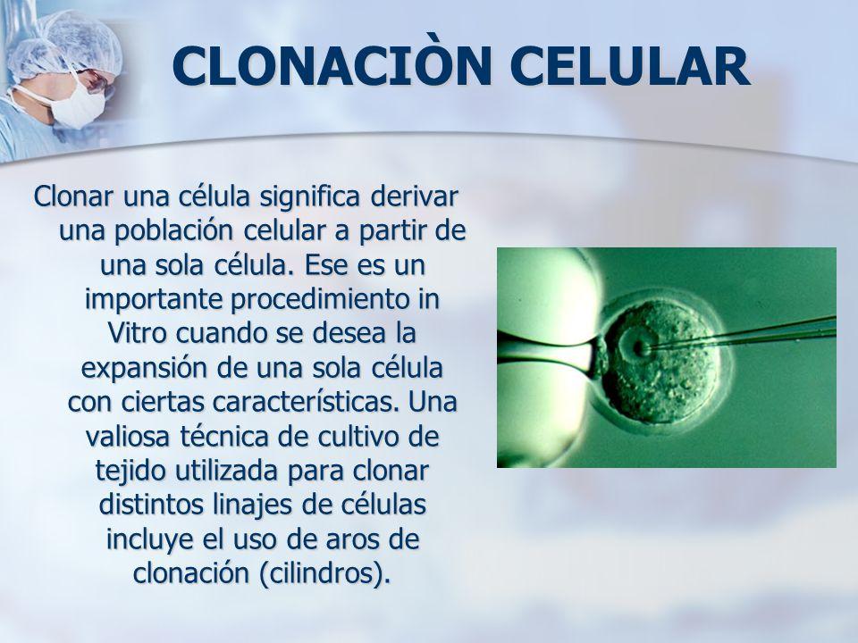 CLONACIÒN CELULAR