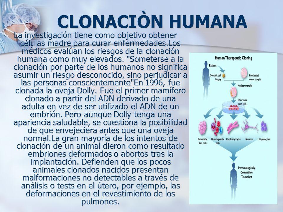CLONACIÒN HUMANA