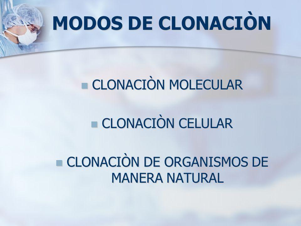 CLONACIÒN DE ORGANISMOS DE MANERA NATURAL