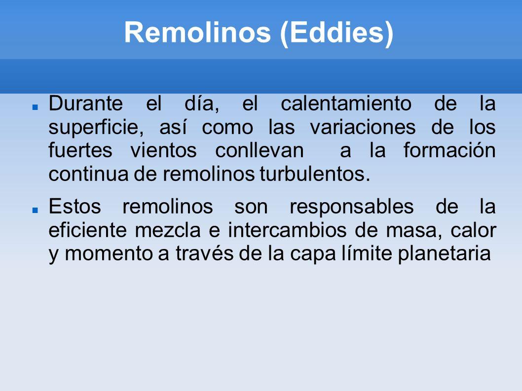 Remolinos (Eddies)