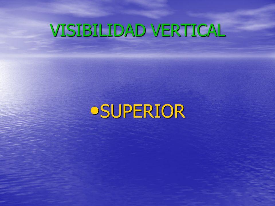 VISIBILIDAD VERTICAL SUPERIOR