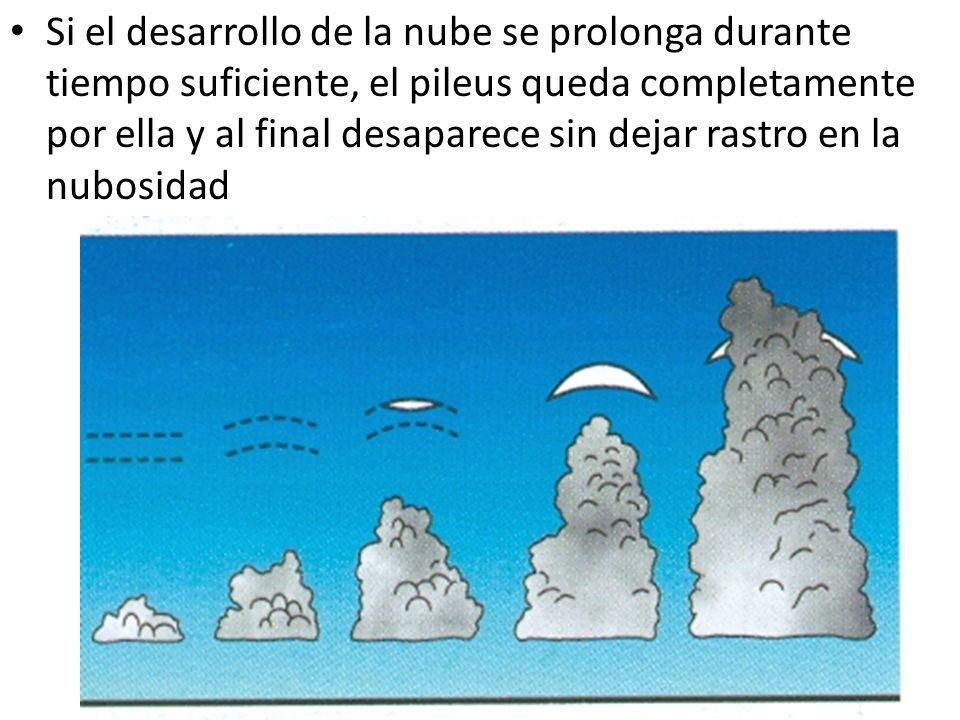 Si el desarrollo de la nube se prolonga durante tiempo suficiente, el pileus queda completamente por ella y al final desaparece sin dejar rastro en la nubosidad