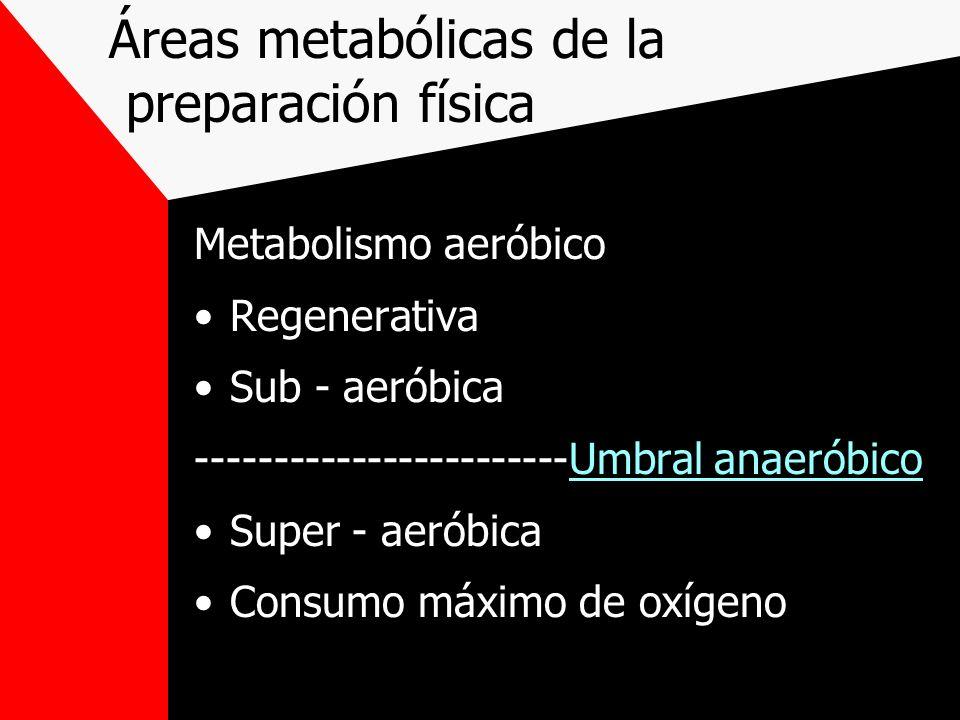 Áreas metabólicas de la preparación física