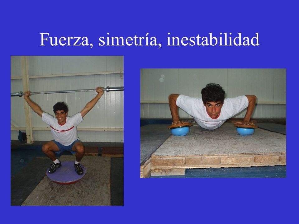 Fuerza, simetría, inestabilidad