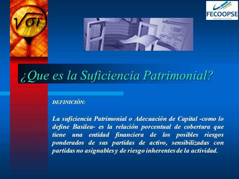 ¿Que es la Suficiencia Patrimonial