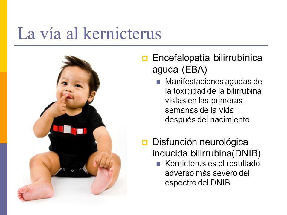 La vía al kernicterus Encefalopatía bilirrubínica aguda (EBA)