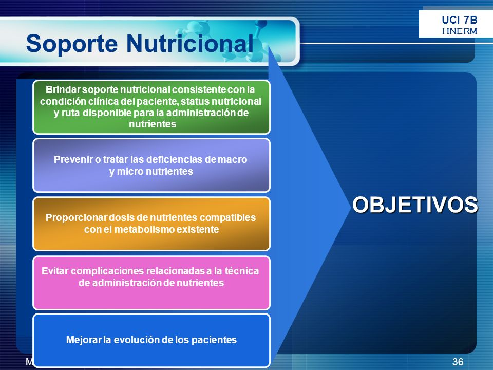 Soporte Nutricional OBJETIVOS UCI 7B