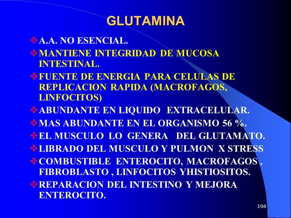 GLUTAMINA A.A. NO ESENCIAL. MANTIENE INTEGRIDAD DE MUCOSA INTESTINAL.
