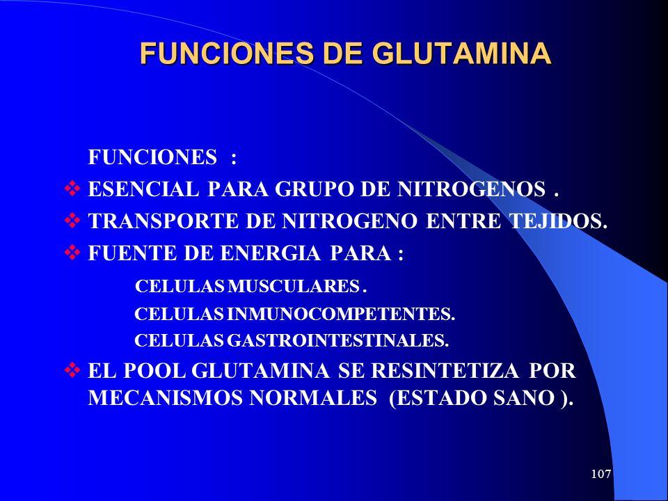 FUNCIONES DE GLUTAMINA