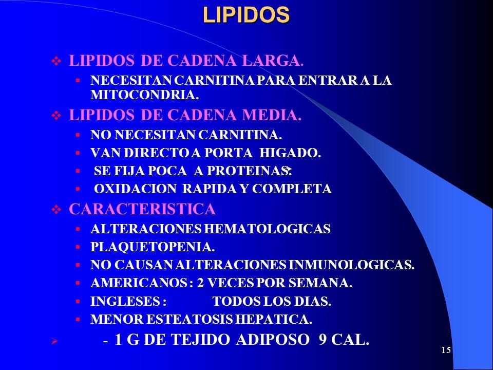 LIPIDOS LIPIDOS DE CADENA LARGA. LIPIDOS DE CADENA MEDIA.