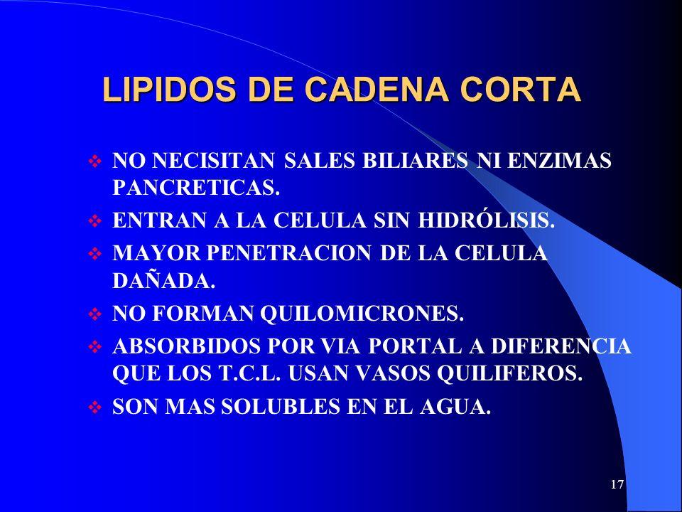 LIPIDOS DE CADENA CORTA