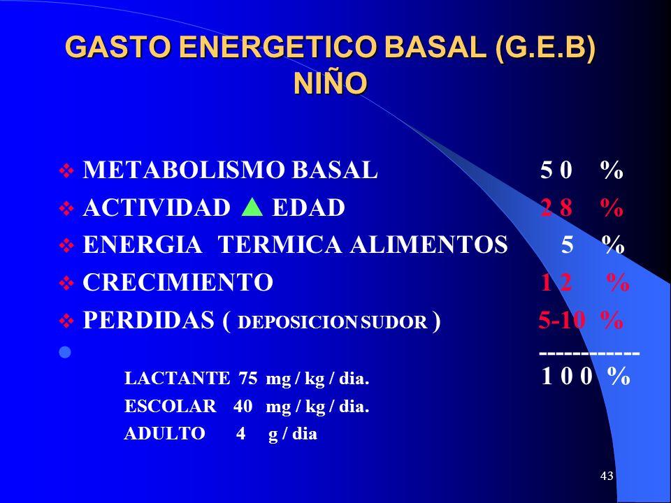 GASTO ENERGETICO BASAL (G.E.B) NIÑO