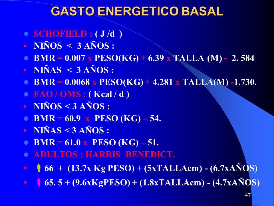 GASTO ENERGETICO BASAL