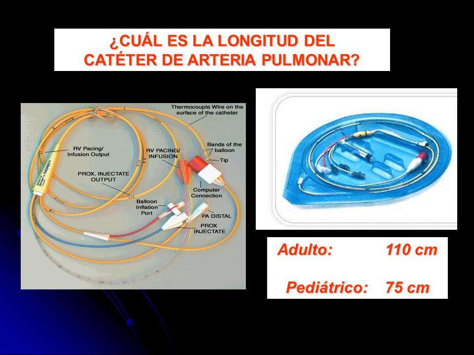 ¿CUÁL ES LA LONGITUD DEL CATÉTER DE ARTERIA PULMONAR