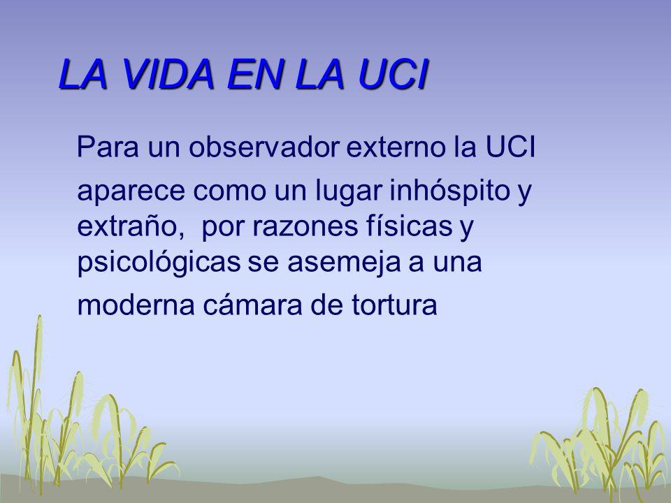 LA VIDA EN LA UCI Para un observador externo la UCI