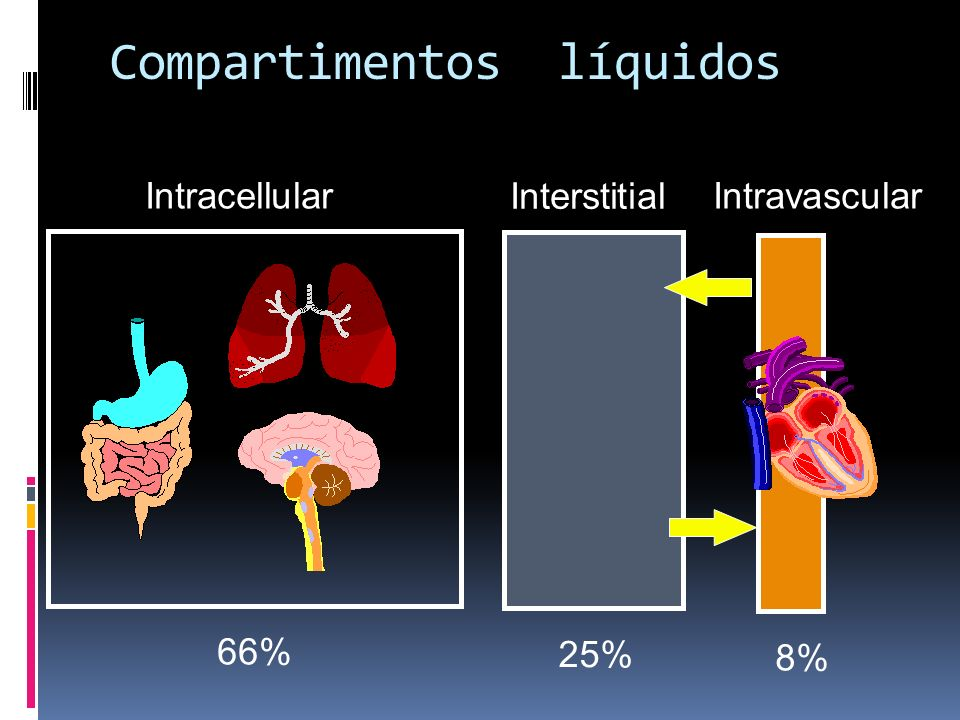 Compartimentos líquidos