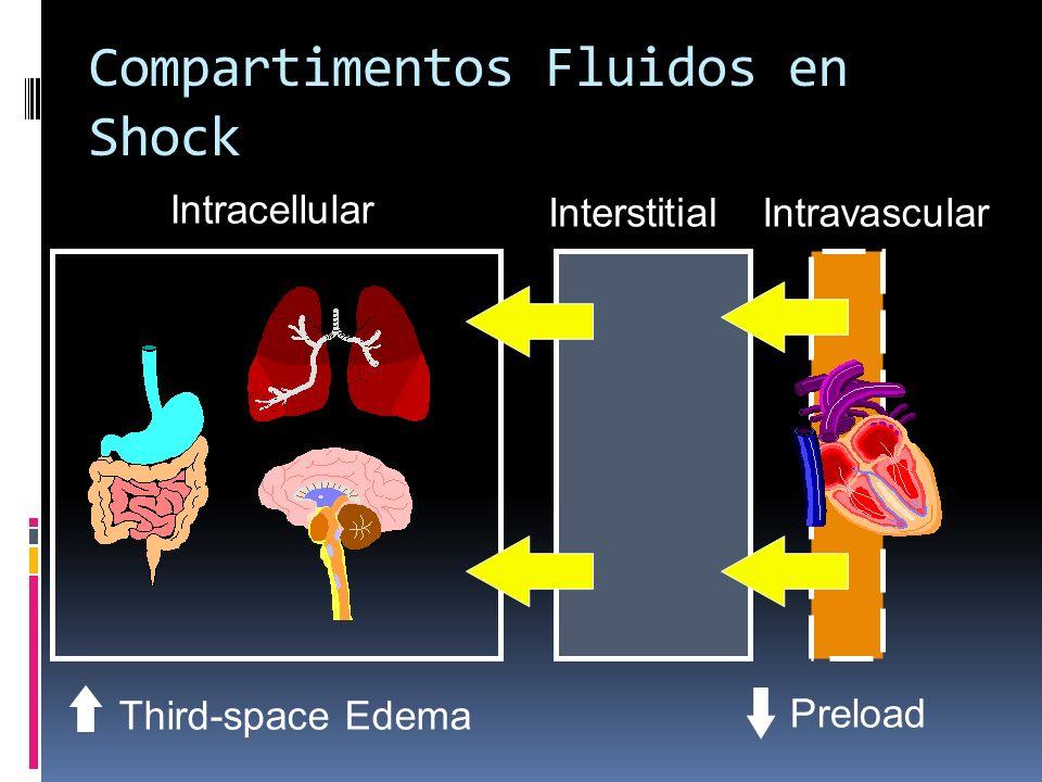 Compartimentos Fluidos en Shock