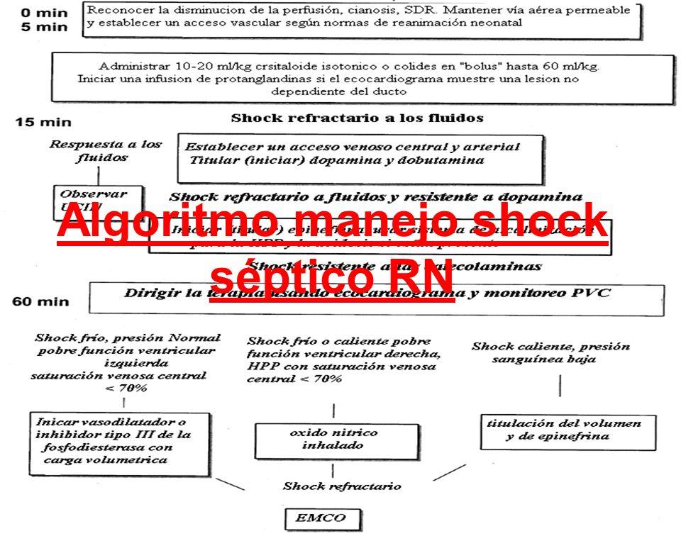 Algoritmo manejo shock séptico RN