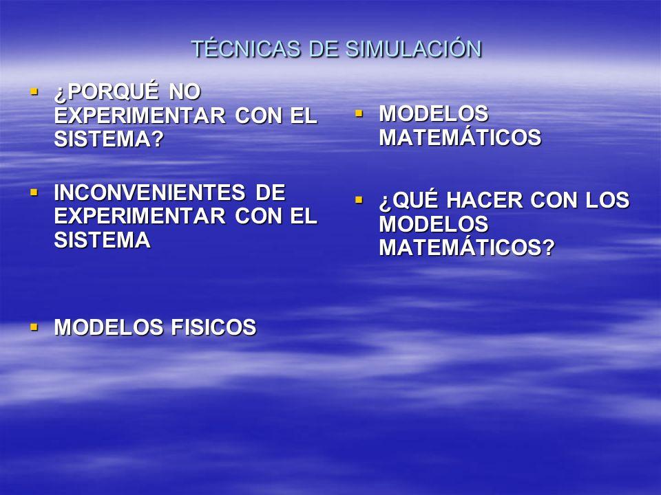TÉCNICAS DE SIMULACIÓN