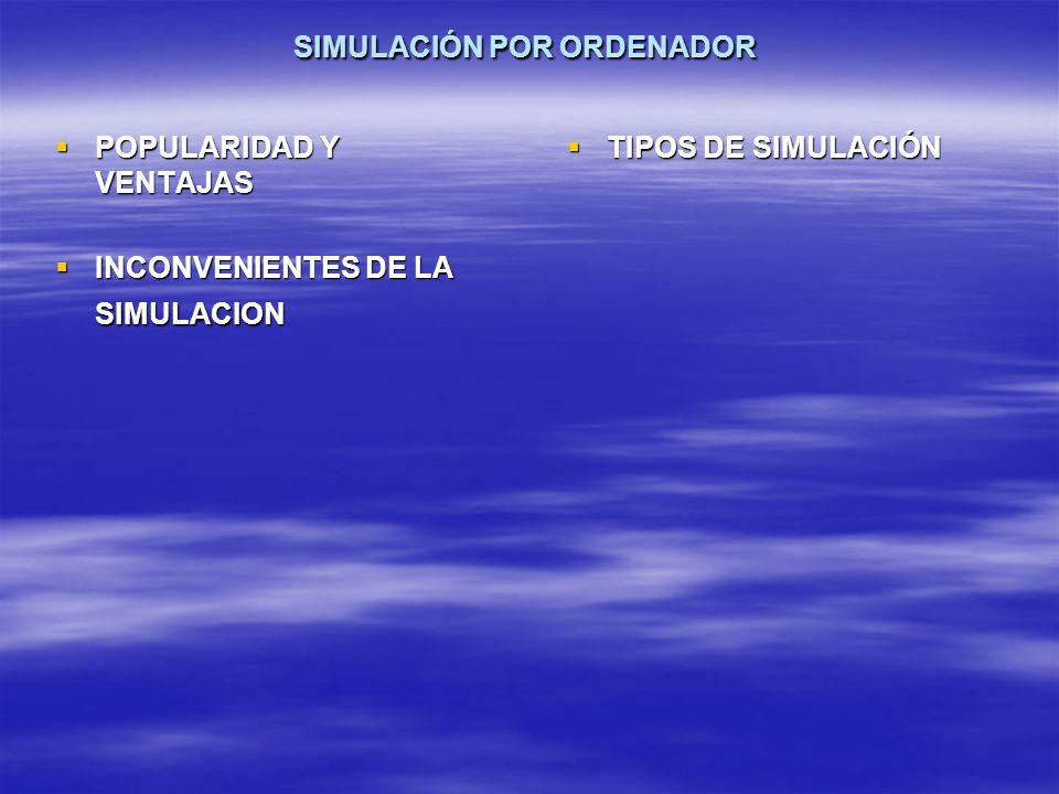 SIMULACIÓN POR ORDENADOR