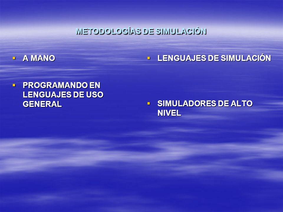 METODOLOGÍAS DE SIMULACIÓN