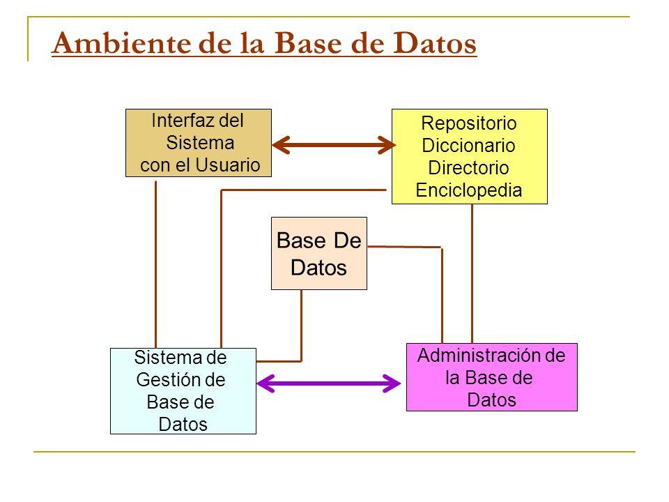 Ambiente de la Base de Datos