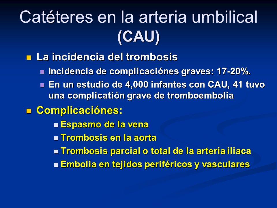 Catéteres en la arteria umbilical (CAU)