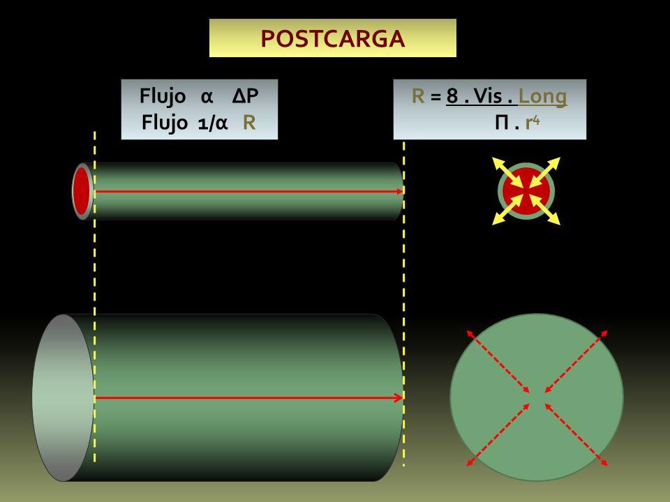 POSTCARGA Flujo α ∆P Flujo 1/α R R = 8 . Vis . Long П . r4