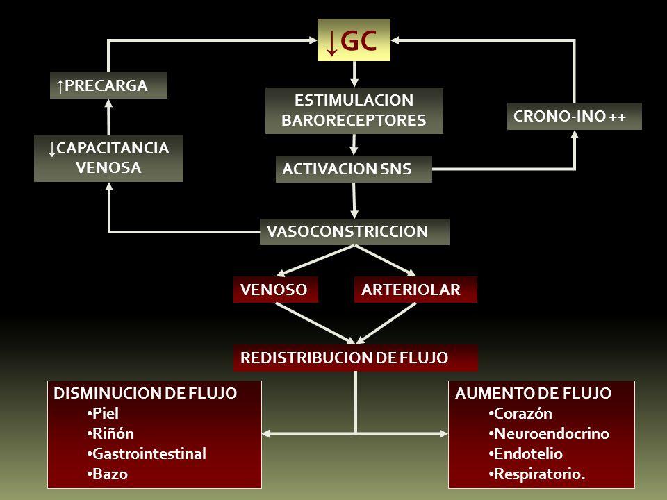 ↓GC ↑PRECARGA ESTIMULACION BARORECEPTORES CRONO-INO ++ ↓CAPACITANCIA
