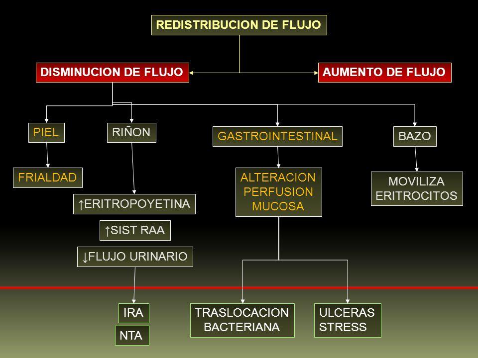 REDISTRIBUCION DE FLUJO