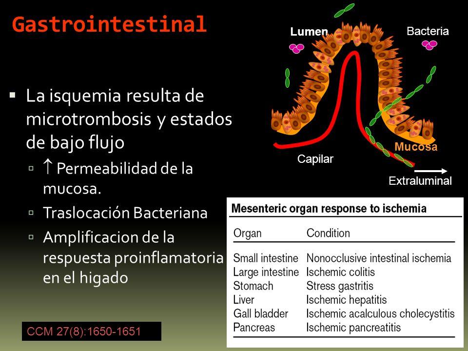 GastrointestinalLumen. Bacteria. La isquemia resulta de microtrombosis y estados de bajo flujo.  Permeabilidad de la mucosa.