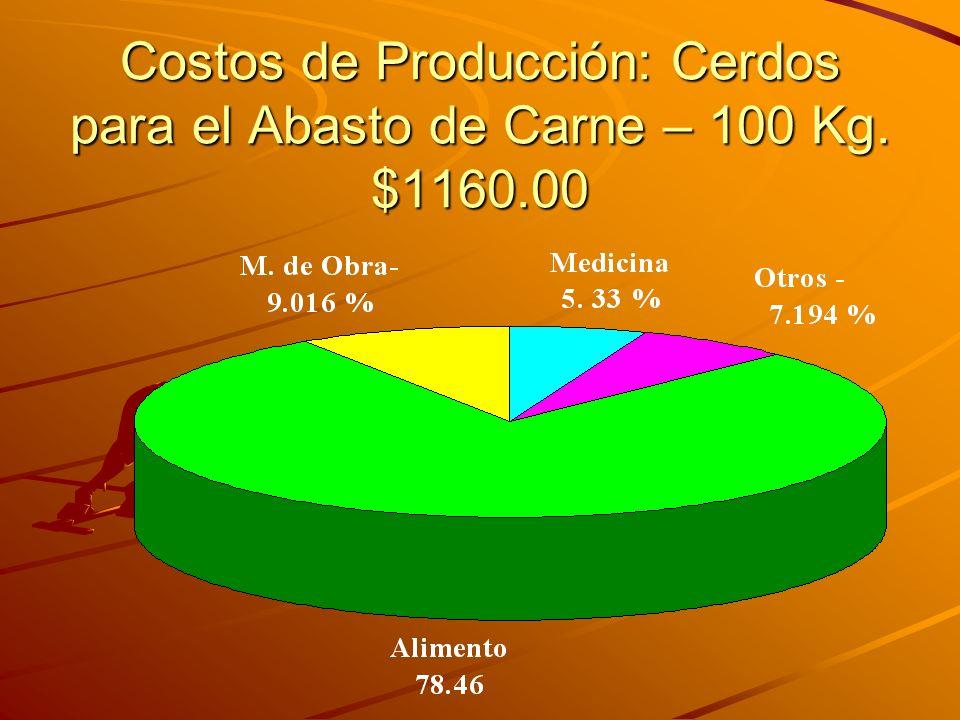 Costos de Producción: Cerdos para el Abasto de Carne – 100 Kg. $1160