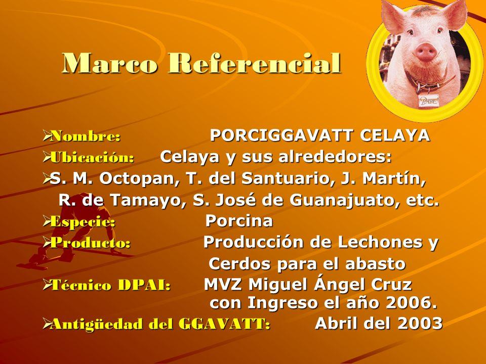 Marco Referencial Nombre: PORCIGGAVATT CELAYA