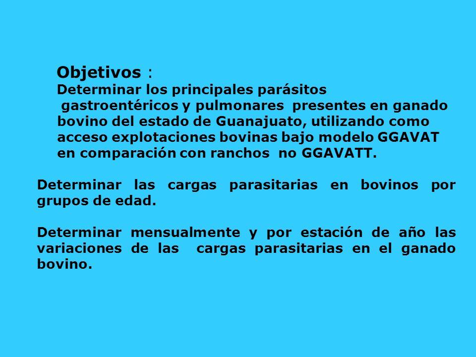 Objetivos : Determinar los principales parásitos