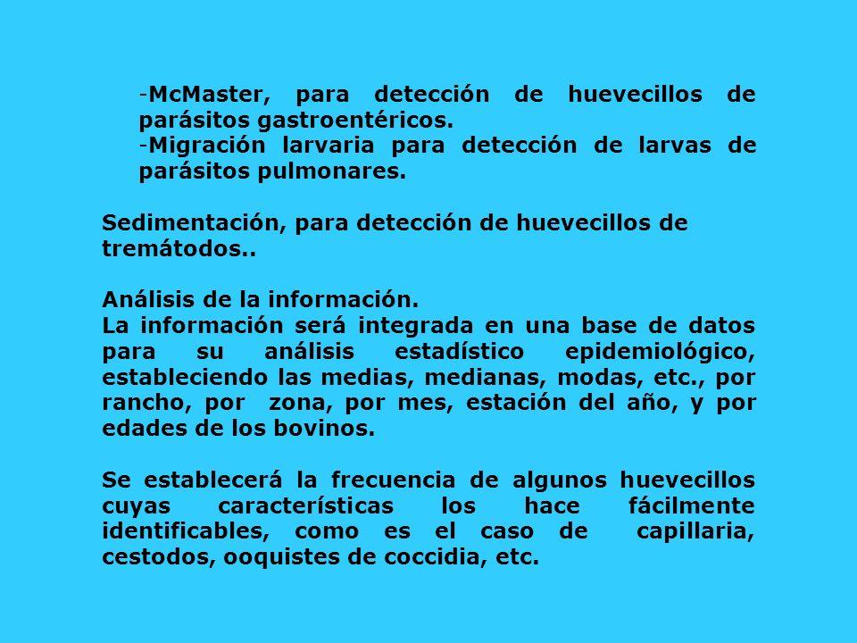 McMaster, para detección de huevecillos de parásitos gastroentéricos.