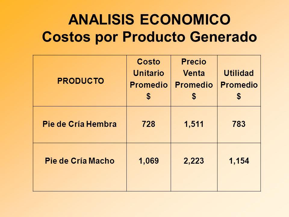 ANALISIS ECONOMICO Costos por Producto Generado