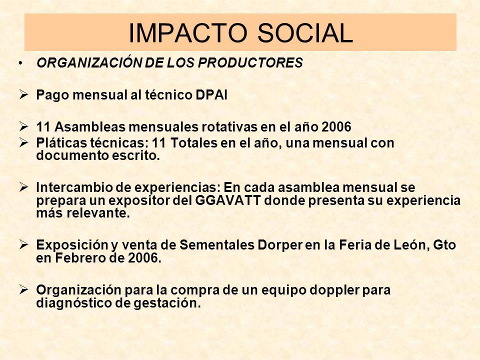 IMPACTO SOCIAL ORGANIZACIÓN DE LOS PRODUCTORES